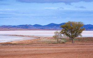 10 Laguna de Gallocanta _ Antonio Garcia _ Flickr_files
