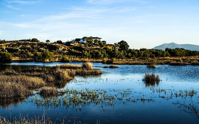 4 Laguna de Fuente de Piedra _ Amelia Pardo _ Flickr Amelia Pardo_files