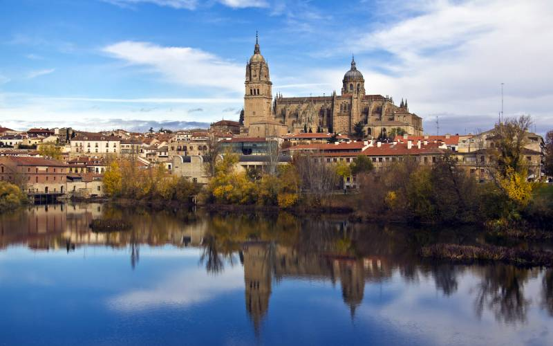 7 Catedral de Salamanca _ Imagen de la Catedral de Salamanca Flickr foto - RicardoJCF -