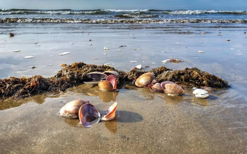 9 9 Playa de Punta Umbría. Huelva _ José María Gómez de Salazar