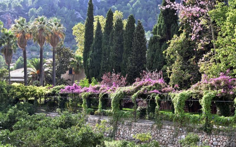 Jardines de Alfabia _ Mallorca _ foto tanjaettl _ Flickr