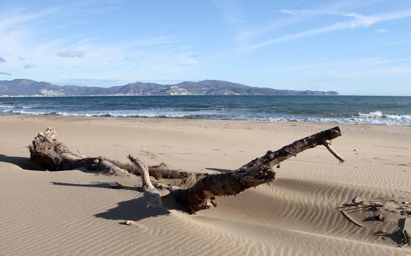 PLATJA DE SANT PERE PESCADOR _ foto Joan Biarnés _ Flickr
