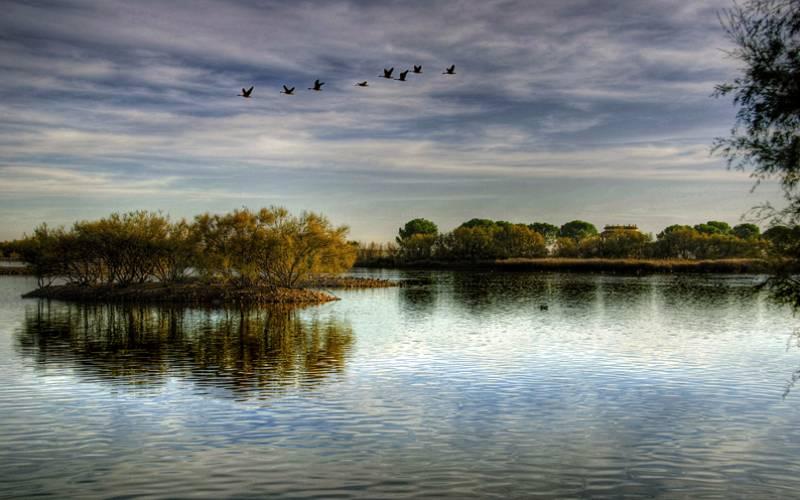 Lagunas de Villafáfila _ Mejor en grande sobre fondo negro _ Flickr foto Ariasgonzalo
