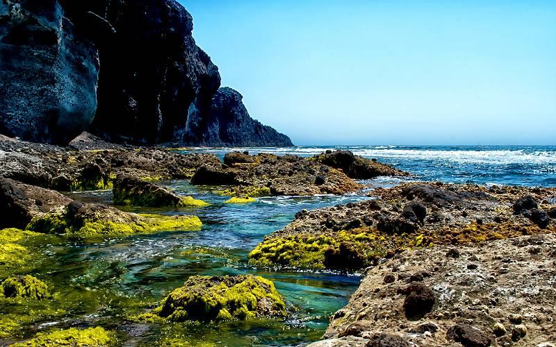 Looking for paradise. - Cabo de Gata. _ Alguno de los bellos… _ foto Miguel Ángel Sánchez-Guerrero