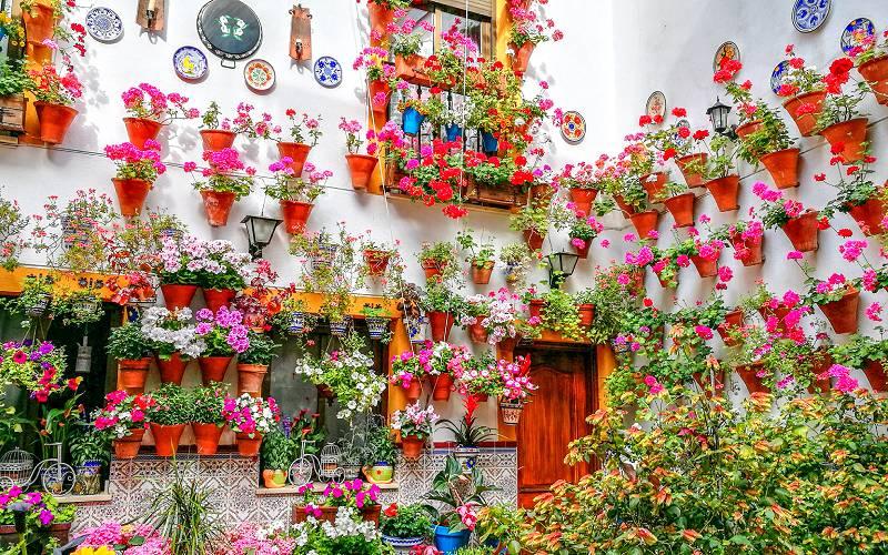 Patios de Córdoba _foto etoma_emiliogmiguez _ Flickr
