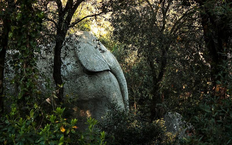 Orrius - Elefante _ Elefante Orrius - Oriius - Barcelona - S… _foto Gio